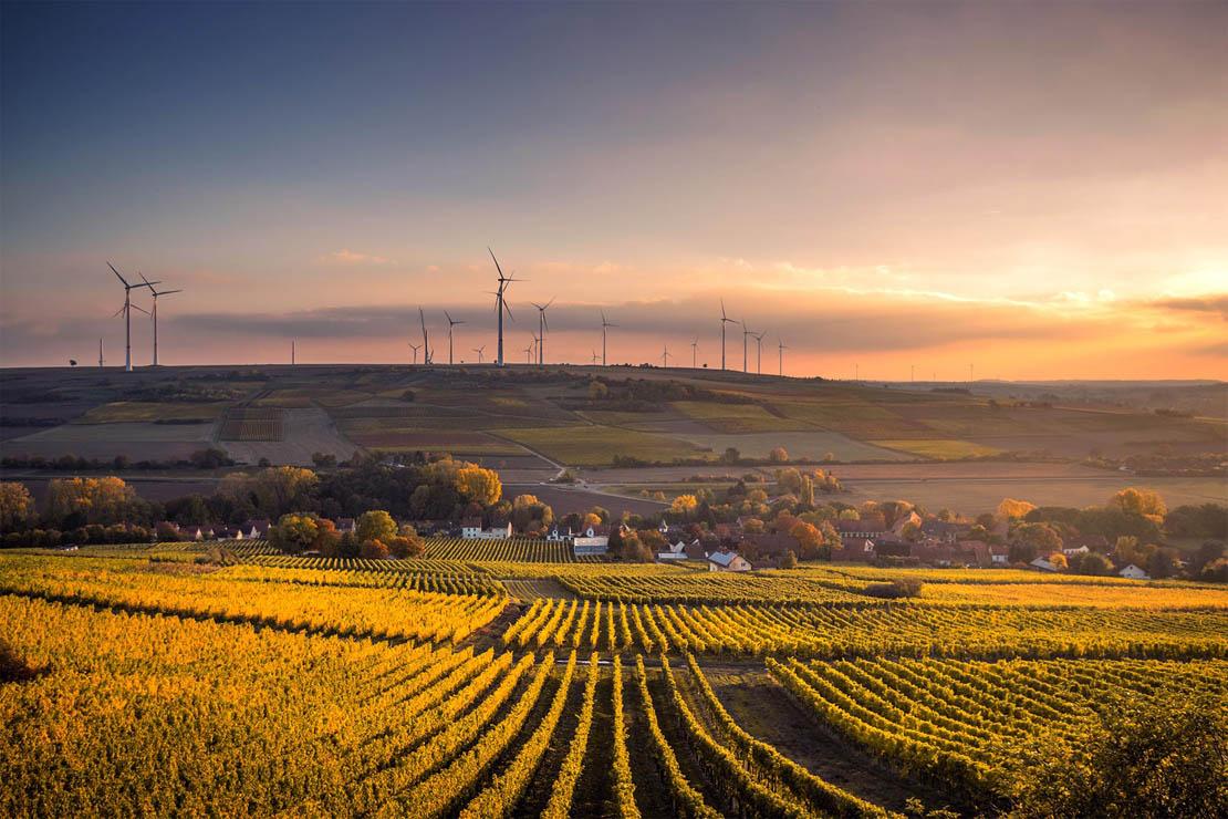 Felder im Sonnenuntergang mit Windrädern